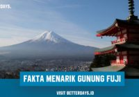 Fakta Menarik Gunung Fuji