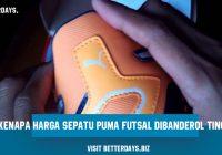 Faktor Penting Kenapa Harga Sepatu Puma Futsal Dibanderol Tinggi